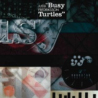 busy-turtles